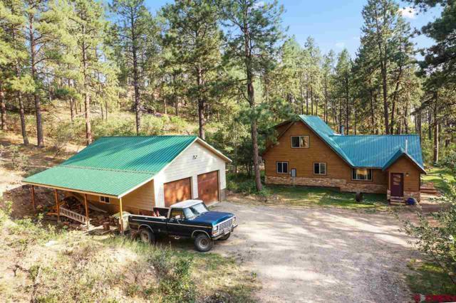 774 Blue Ridge, Bayfield, CO 81122 (MLS #749094) :: Durango Home Sales