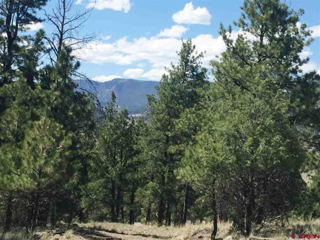 838 Escondida Drive, South Fork, CO 81154 (MLS #749111) :: Durango Home Sales