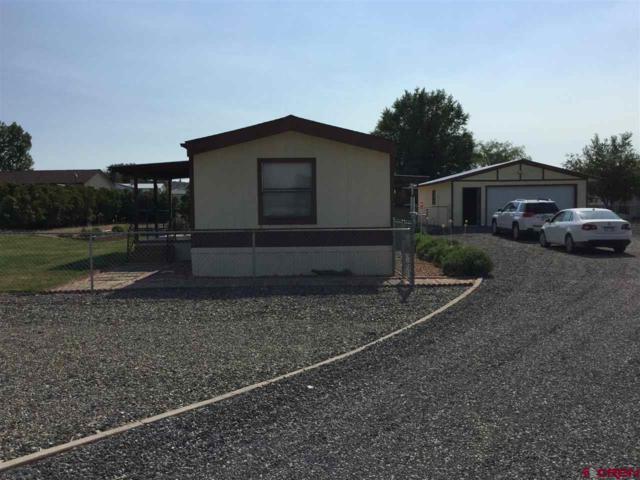 13304 Valley View Drive, Eckert, CO 81418 (MLS #749113) :: Durango Home Sales