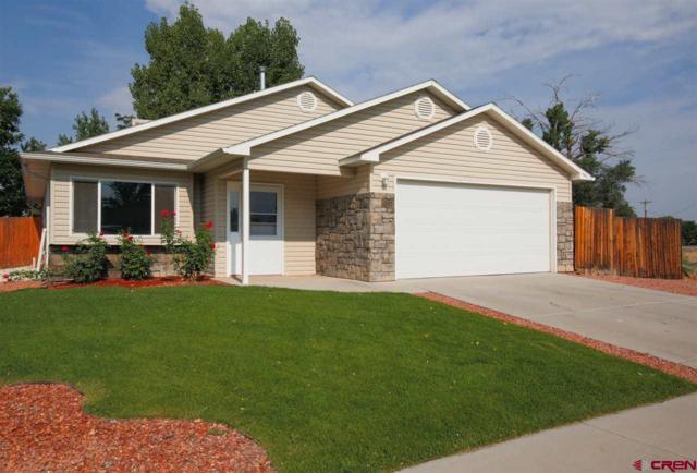 1349 Anthracite Creek Avenue, Montrose, CO 81401 (MLS #749140) :: CapRock Real Estate, LLC