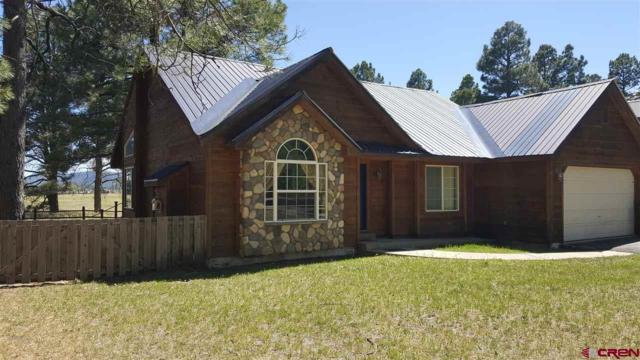 628 Cloud Cap Avenue, Pagosa Springs, CO 81147 (MLS #749141) :: Durango Home Sales
