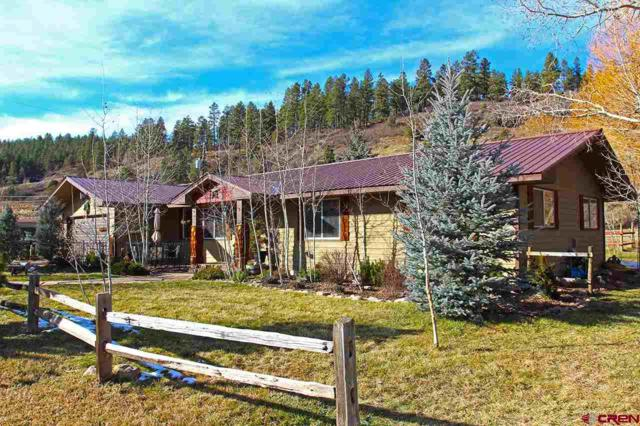 221 North East Circle, Durango, CO 81301 (MLS #749149) :: CapRock Real Estate, LLC
