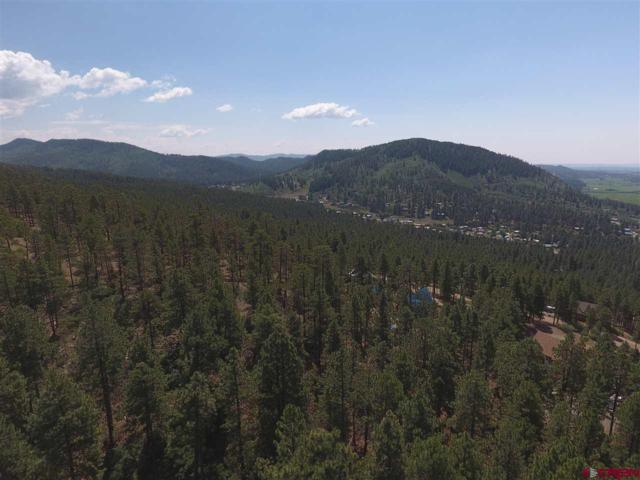 TBD Timber Drive, Bayfield, CO 81122 (MLS #749181) :: Durango Home Sales