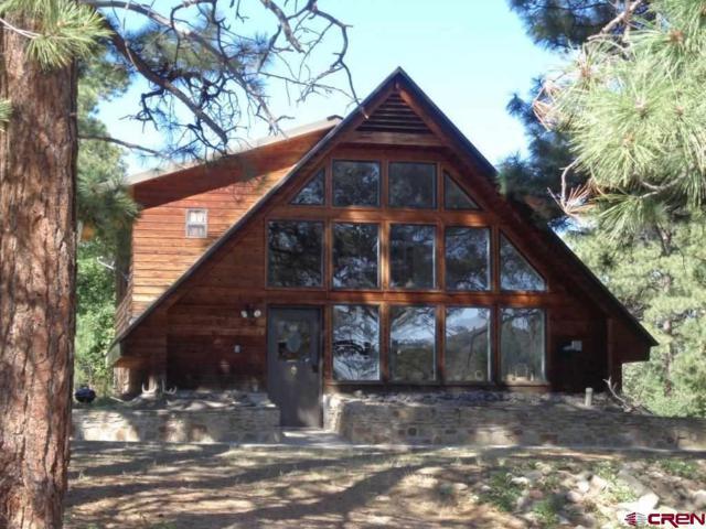 511 Blue Jay Circle, Pagosa Springs, CO 81147 (MLS #749186) :: Durango Home Sales