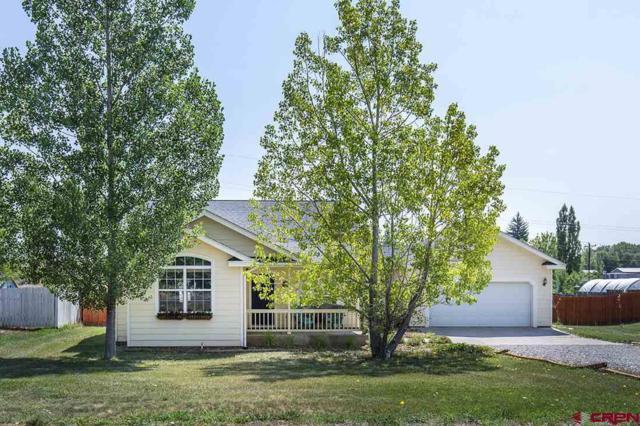 581 Knolls Circle, Durango, CO 81303 (MLS #749200) :: Durango Mountain Realty