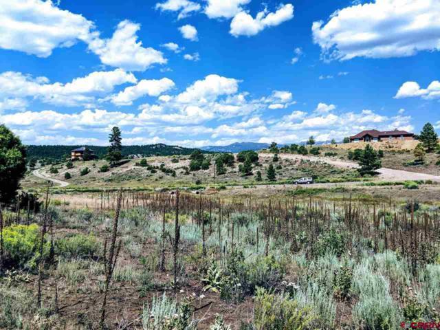 484 Loma Linda Drive, Pagosa Springs, CO 81147 (MLS #749210) :: CapRock Real Estate, LLC