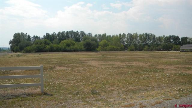 TBD Oleander Lot 10 Circle, Montrose, CO 81403 (MLS #749211) :: CapRock Real Estate, LLC