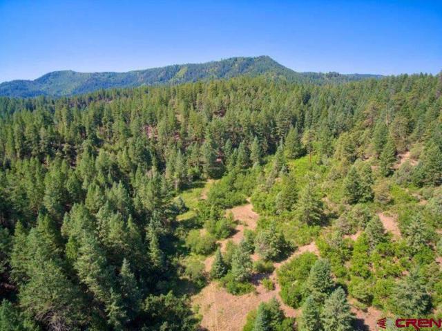 768 Elbert Place, Pagosa Springs, CO 81147 (MLS #749221) :: CapRock Real Estate, LLC