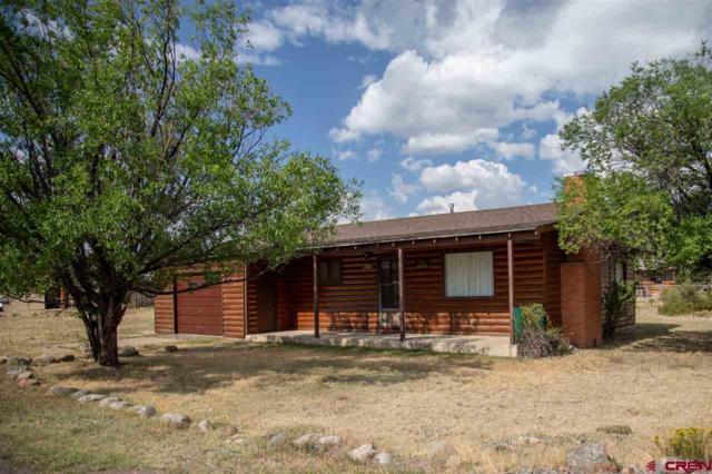 111 Birch Street, South Fork, CO 81154 (MLS #749234) :: Durango Home Sales