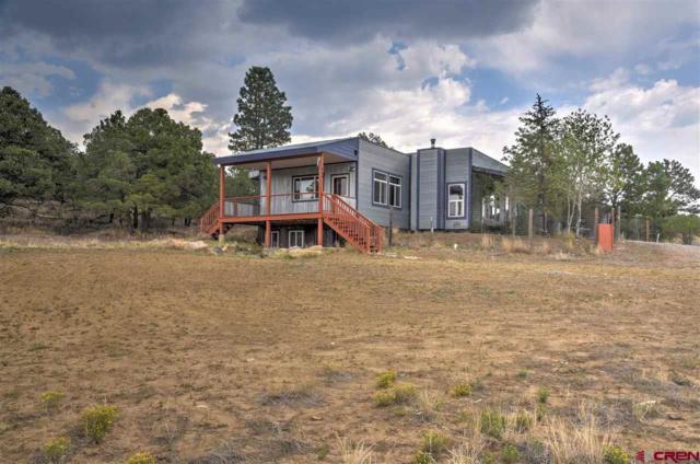 665 Rustic Road, Durango, CO 81301 (MLS #749264) :: Durango Mountain Realty