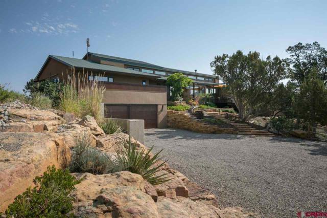 1345 Thunderbird Road, Hesperus, CO 81326 (MLS #749266) :: Durango Mountain Realty