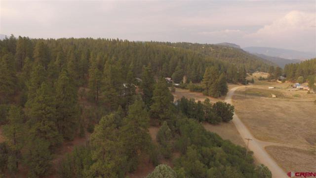 TBD Meadow Road, Durango, CO 81303 (MLS #749293) :: Durango Mountain Realty