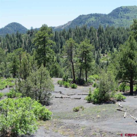 256 & 162 Crestone, Pagosa Springs, CO 81147 (MLS #749313) :: CapRock Real Estate, LLC