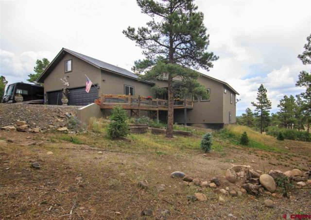 2419 North Pagosa Blvd, Pagosa Springs, CO 81147 (MLS #749335) :: CapRock Real Estate, LLC