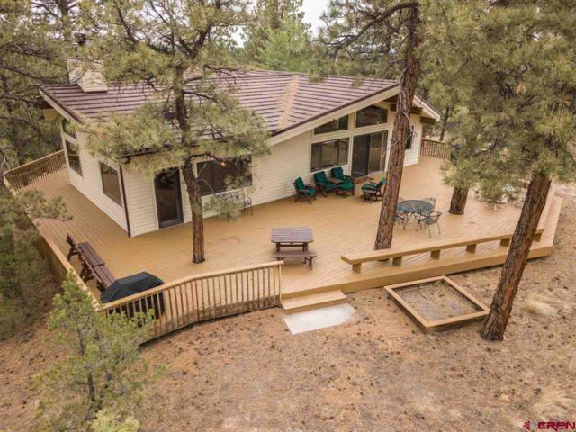 435 Juniper Road, Ridgway, CO 81432 (MLS #749352) :: CapRock Real Estate, LLC