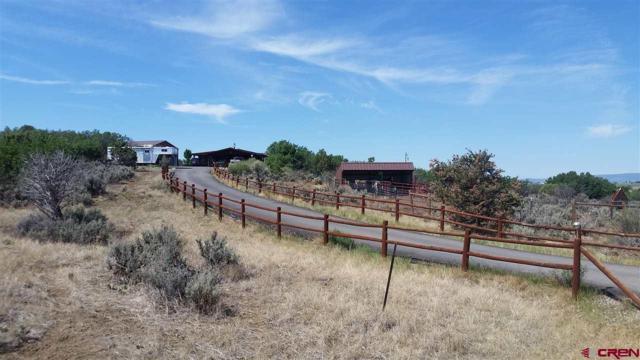 564 Via Vista Circle, Durango, CO 81301 (MLS #749362) :: Durango Mountain Realty