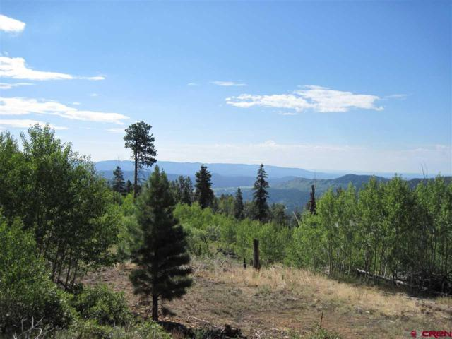 TBD Rosalie Drive, Durango, CO 81301 (MLS #749373) :: Durango Home Sales