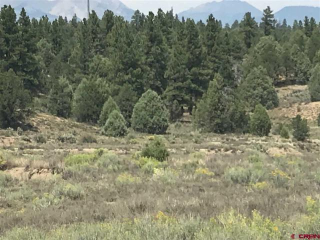 Lot 1 Silvermine Drive, Durango, CO 81301 (MLS #749379) :: Durango Home Sales