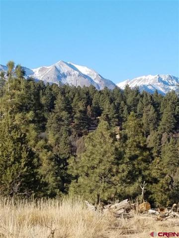717 Zane Drive, Durango, CO 81303 (MLS #749425) :: CapRock Real Estate, LLC