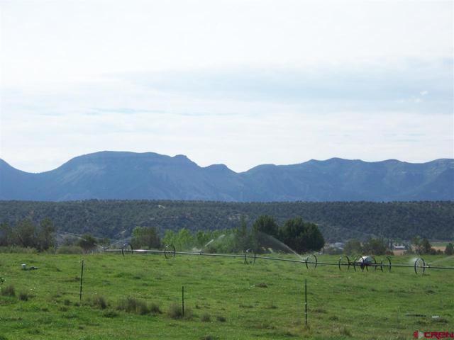 00? Road M, Dolores, CO 81323 (MLS #749547) :: Keller Williams CO West / Mountain Coast Group