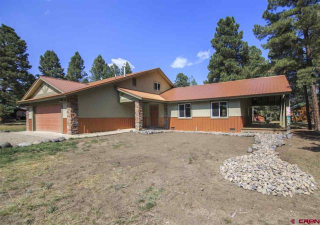 121 Inspiration Drive, Pagosa Springs, CO 81147 (MLS #749610) :: Durango Home Sales
