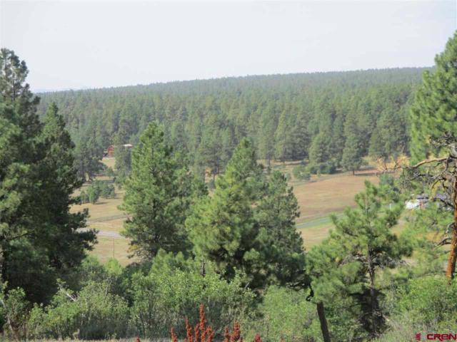 X N Pagosa Boulevard, Pagosa Springs, CO 81147 (MLS #749619) :: Durango Home Sales