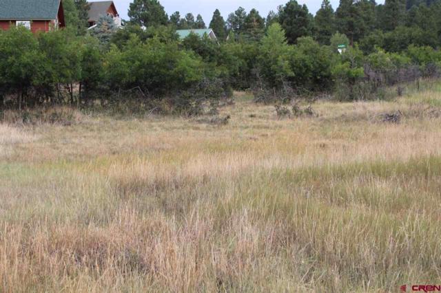 91 Caballero Drive, Pagosa Springs, CO 81147 (MLS #749624) :: CapRock Real Estate, LLC