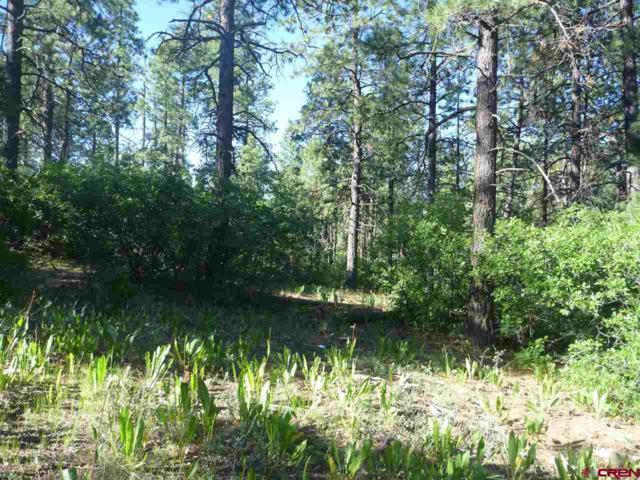 578 E Log Hill Road, Pagosa Springs, CO 81147 (MLS #749632) :: CapRock Real Estate, LLC