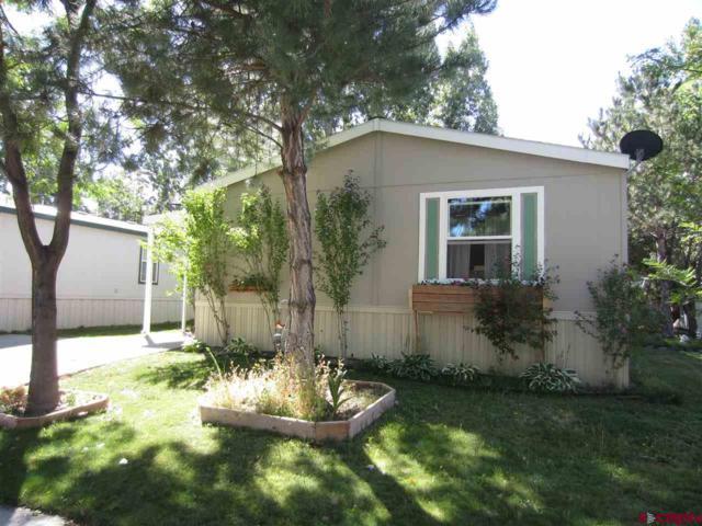901 6530 RD  #1006, Montrose, CO 81401 (MLS #749705) :: Durango Home Sales