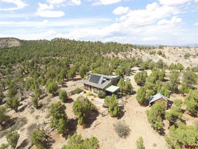 475 Braceland Lane, Durango, CO 81303 (MLS #749734) :: Durango Mountain Realty