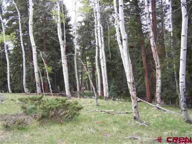 345 Aspen Trail, Cimarron, CO 81220 (MLS #749749) :: Durango Home Sales