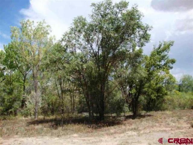 TBD Balsam, Cortez, CO 81321 (MLS #749759) :: CapRock Real Estate, LLC