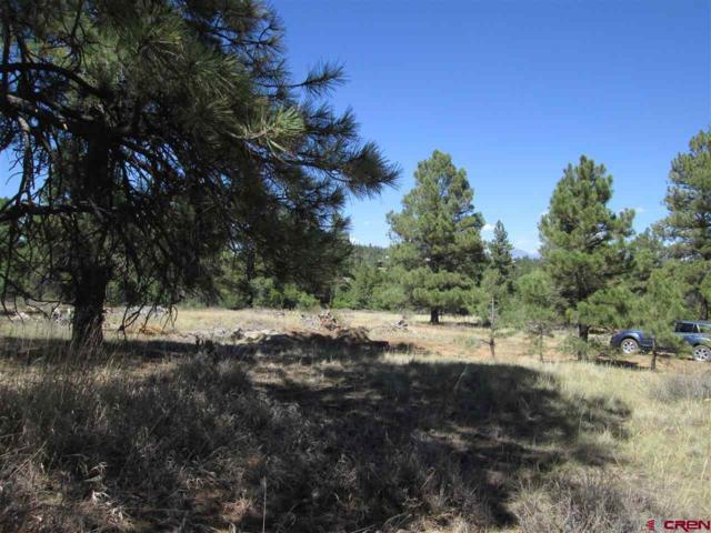 12 Lynx Court, Pagosa Springs, CO 81147 (MLS #749762) :: Durango Home Sales