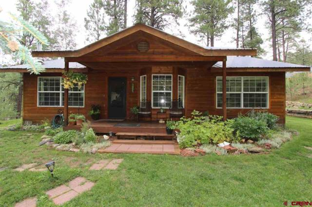 612 Alpine Forest Drive, Bayfield, CO 81122 (MLS #749788) :: CapRock Real Estate, LLC