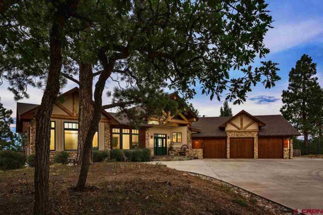 381 Ute Junction Circle, Durango, CO 81303 (MLS #749867) :: CapRock Real Estate, LLC