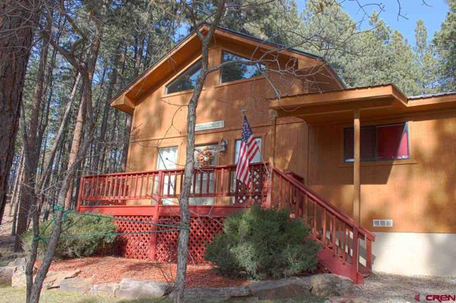 17 Antelope Drive, Bayfield, CO 81122 (MLS #749877) :: CapRock Real Estate, LLC