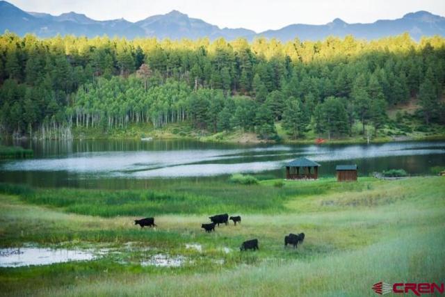 HVR_Lot24 Hidden Valley Drive, Pagosa Springs, CO 81147 (MLS #749880) :: Durango Home Sales