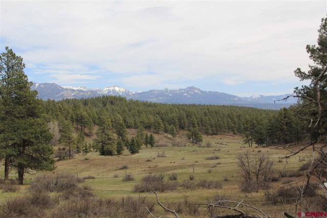 HVR Lot 32 Piney Place, Pagosa Springs, CO 81147 (MLS #749887) :: Durango Home Sales
