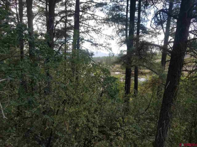 22 River Run Drive, Pagosa Springs, CO 81147 (MLS #749907) :: Keller Williams CO West / Mountain Coast Group
