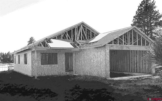 221 Carpin Circle, Pagosa Springs, CO 81147 (MLS #749945) :: CapRock Real Estate, LLC
