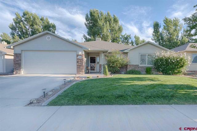 1219 Bighorn Street, Montrose, CO 81401 (MLS #749971) :: CapRock Real Estate, LLC