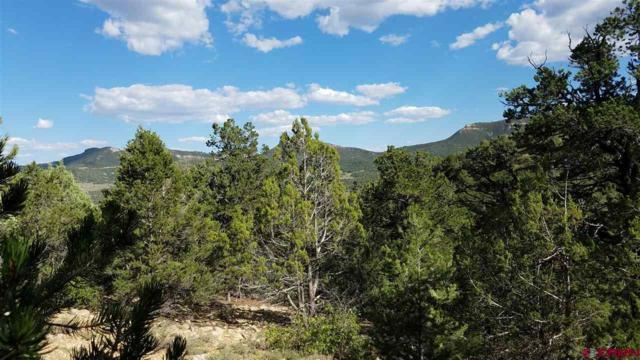 915 Huntington Road, Durango, CO 81303 (MLS #749976) :: Durango Mountain Realty