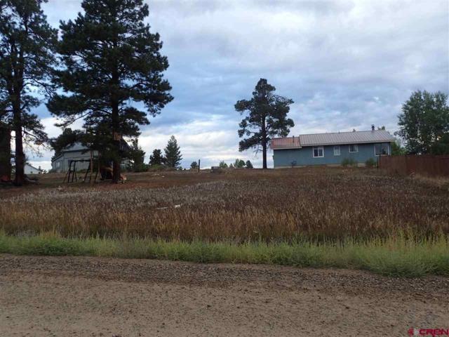199 Sam Houston, Pagosa Springs, CO 81147 (MLS #750013) :: Durango Home Sales