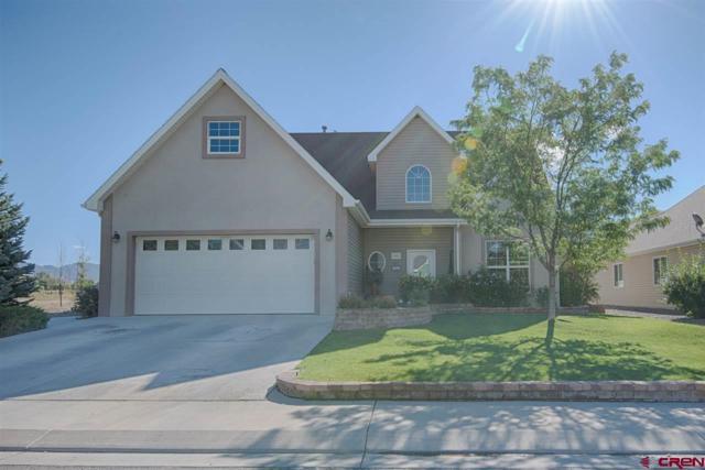 1342 Excelsior Creek Avenue, Montrose, CO 81401 (MLS #750014) :: CapRock Real Estate, LLC