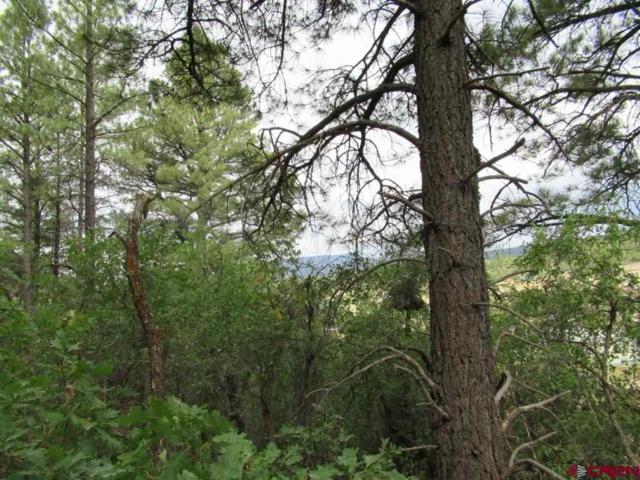 54 River Run Drive, Pagosa Springs, CO 81147 (MLS #750024) :: The Dawn Howe Group | Keller Williams Colorado West Realty