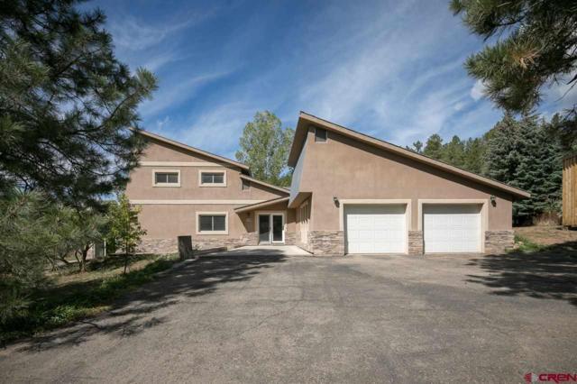 768 Sortais Road, Durango, CO 81301 (MLS #750028) :: Durango Mountain Realty