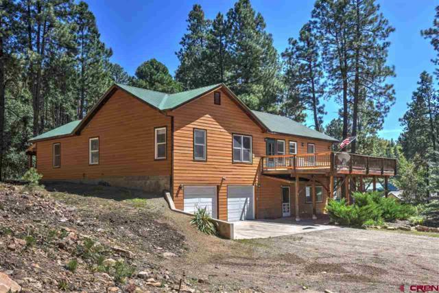 1609 Pine Valley, Bayfield, CO 81122 (MLS #750038) :: CapRock Real Estate, LLC