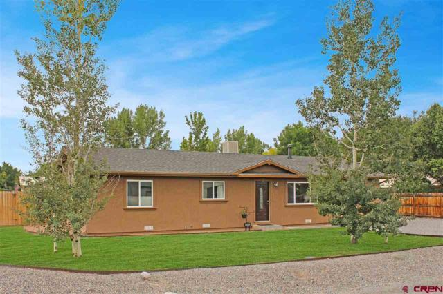 64168 N Ramona Road, Montrose, CO 81403 (MLS #750055) :: CapRock Real Estate, LLC