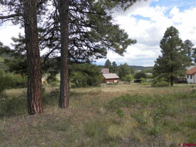 79 Trinity Court, Pagosa Springs, CO 81147 (MLS #750057) :: CapRock Real Estate, LLC