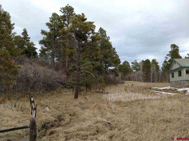 412 Caddy Circle, Pagosa Springs, CO 81147 (MLS #750079) :: CapRock Real Estate, LLC
